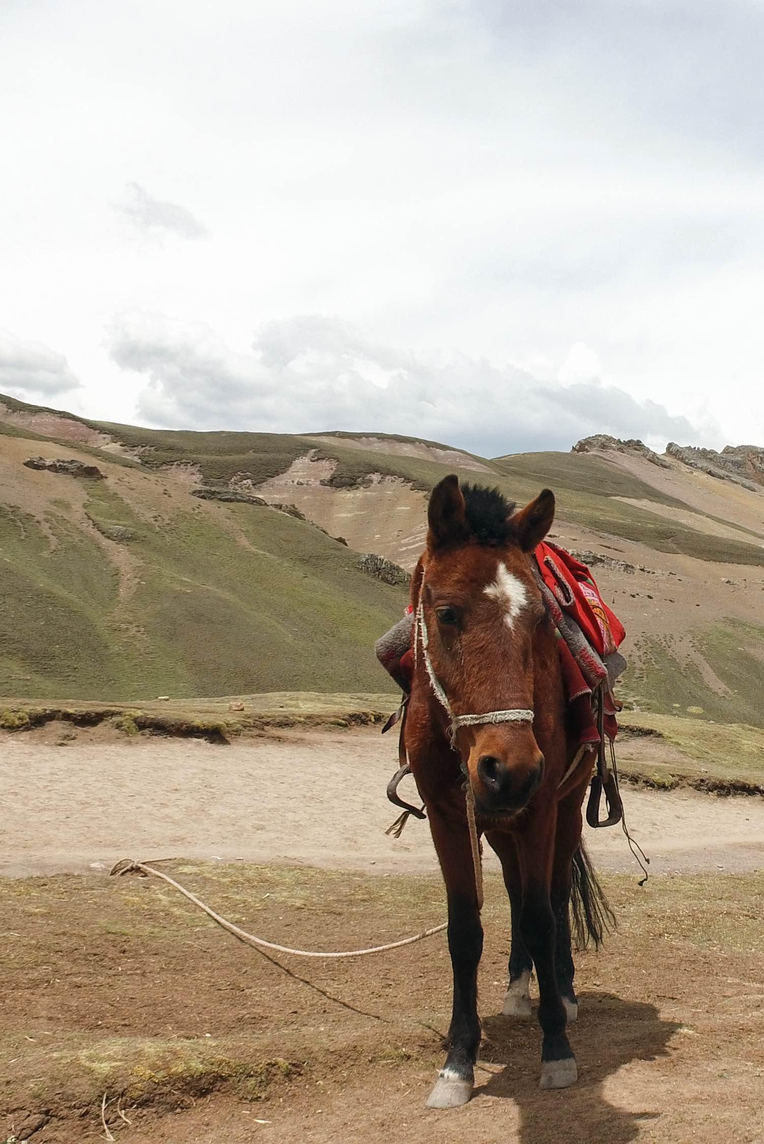 Čo vidieť a navštíviť v Peru