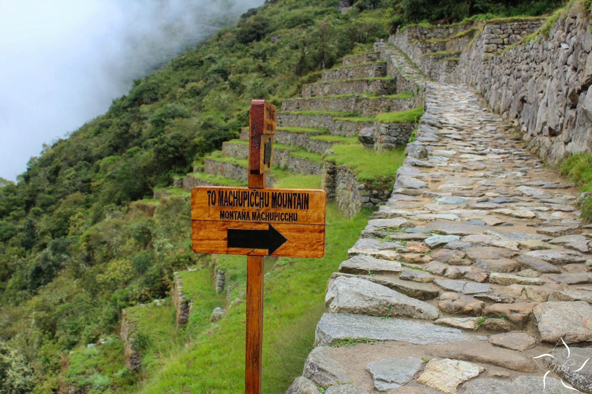 Machu Picchu montaňa
