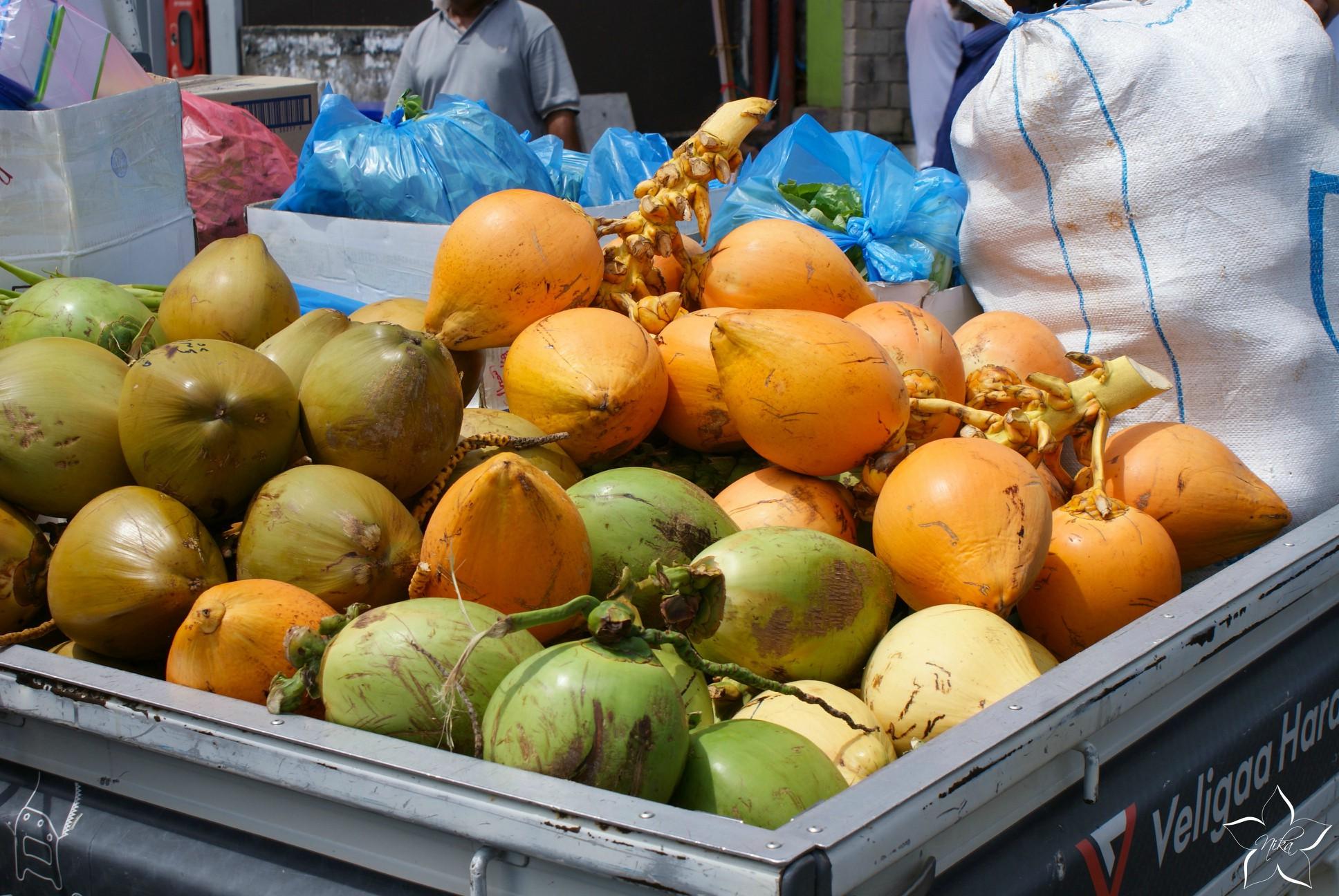 maldivian coconuts