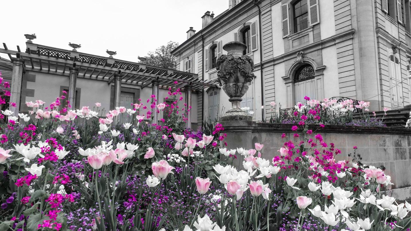 geneva park kvetinovy zahon