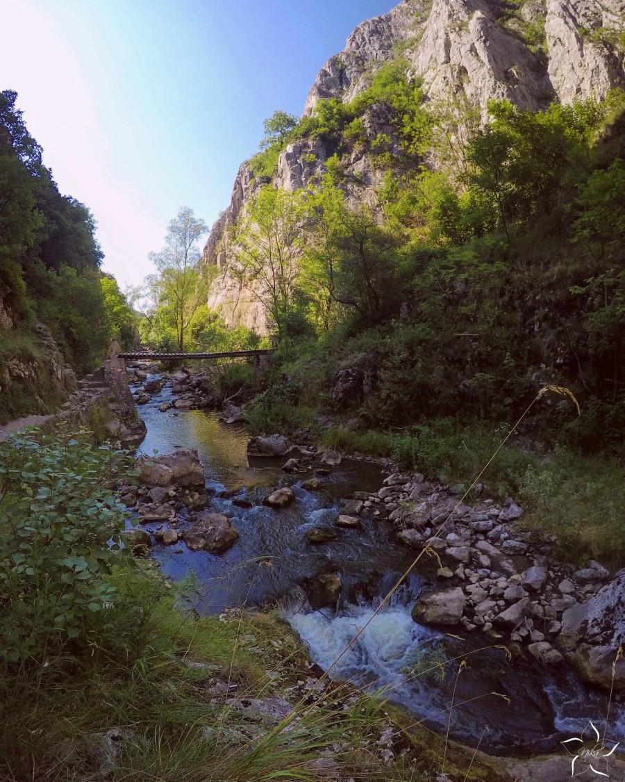 cheile turzii priroda rumunsko