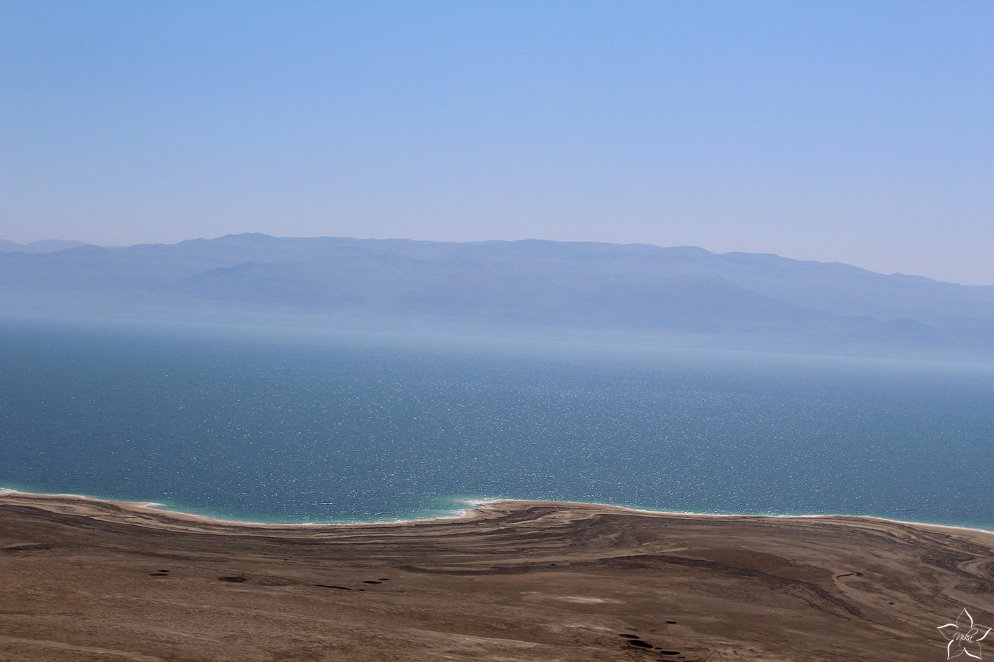 mrtve more dead sea izrael 3
