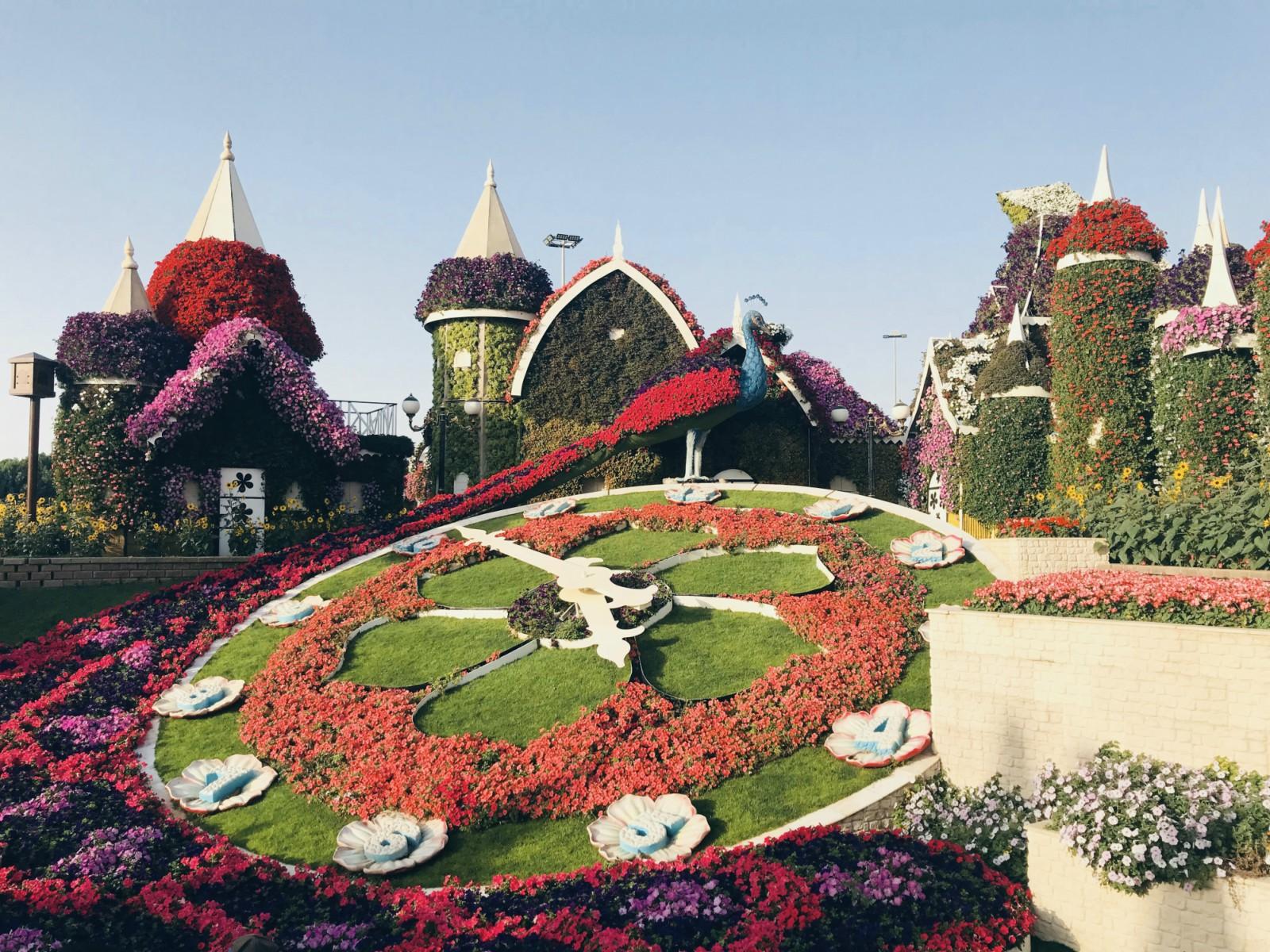 Dovolenka v Dubaji zaujímavosti Miracle Garden