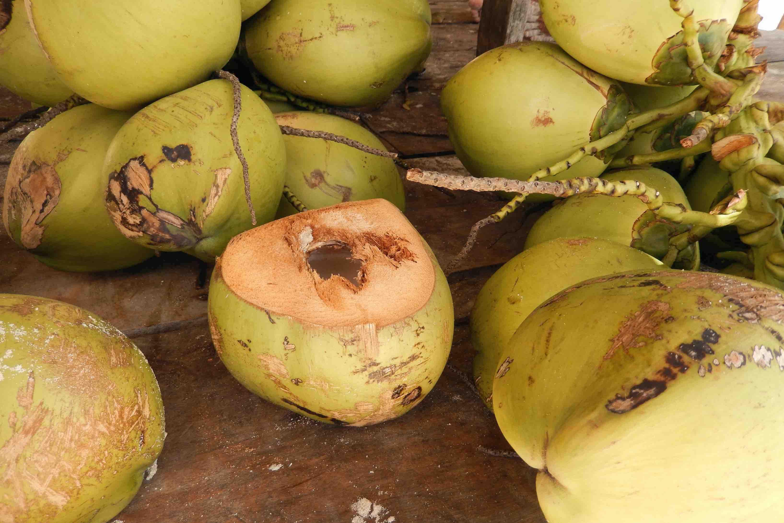 Maldivy kuchyňa - čo treba pred cestou vedieť?