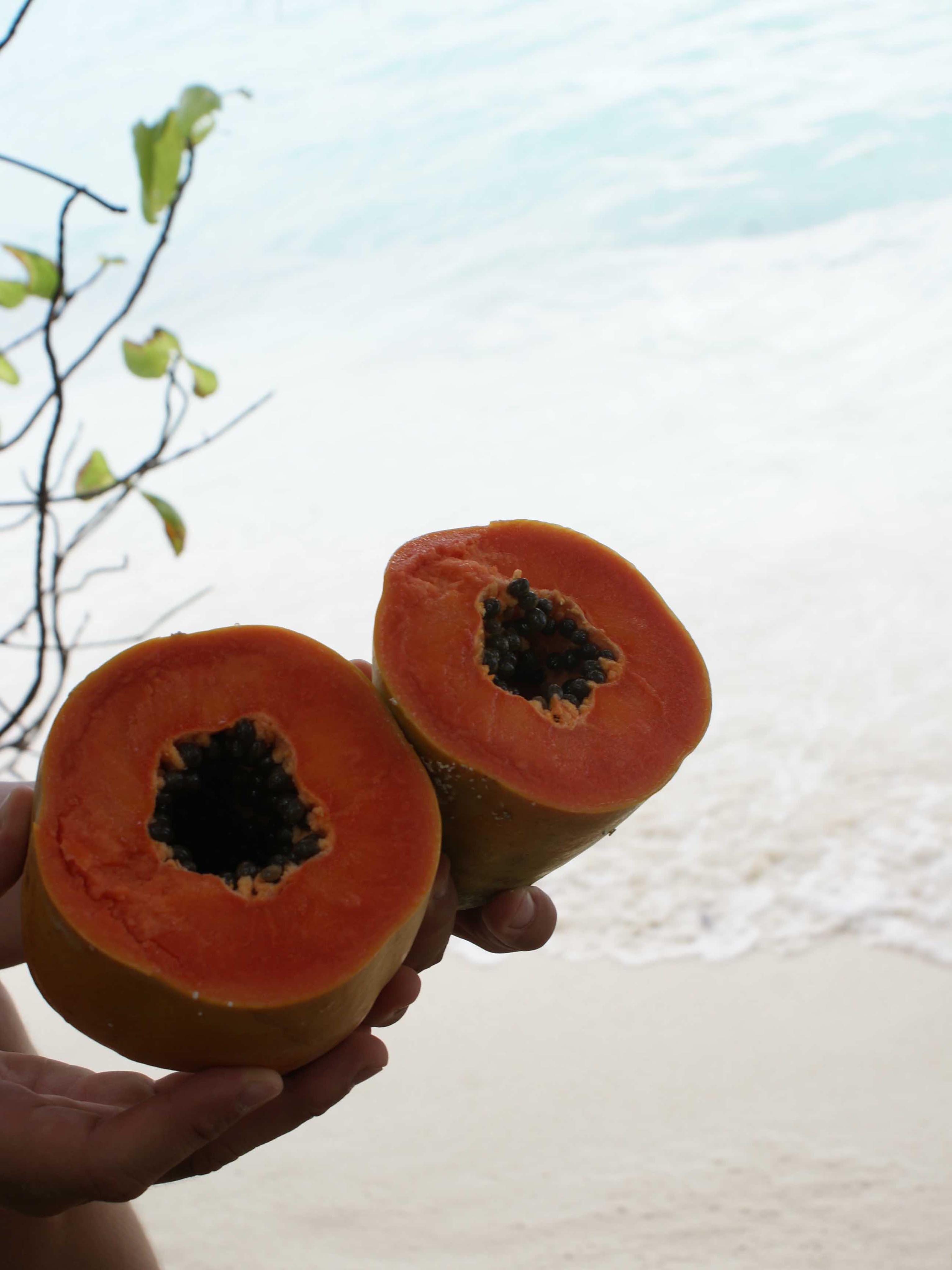 Ostrov Thoddoo na Maldivách - čo mi na ostrove chýbalo?