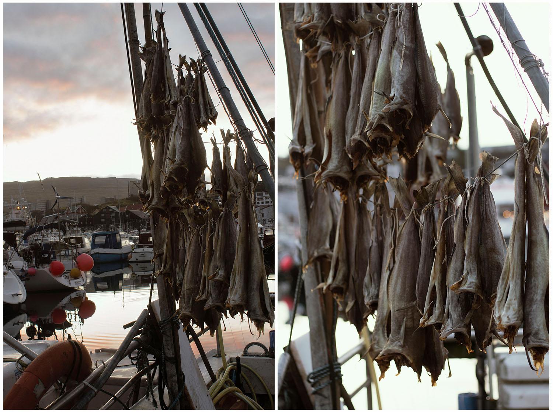 Ostrov Streymoy - sušenie rýb v hlavnom meste Tórshavn