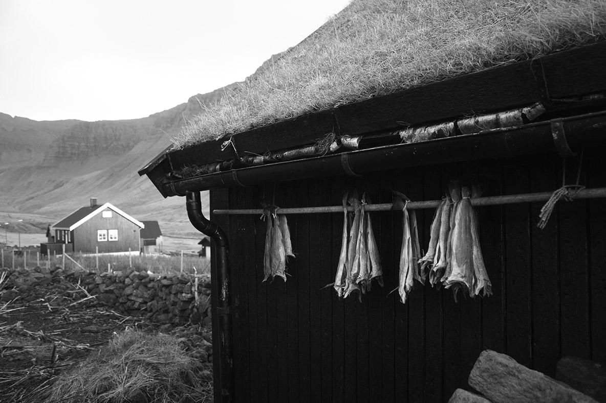Cestovanie na Faerské ostrovy - stravovanie
